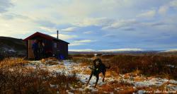 Forollhogna - Naturopplevelser i De Snille Fjell