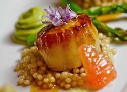 DISH - Creative Cuisine