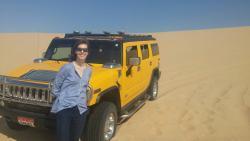 The Yellow Safari