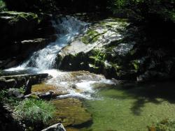 Bangtaesan Recreational Forest
