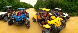 Jungle Buggy Tour