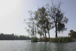 Praia Fluvial da Mina de São Domingos