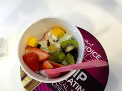 Yogurtland Miracle Mile