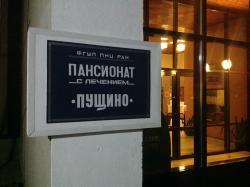 Hotel Pushchino