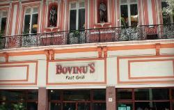 Bovinus - XV de Novembro