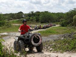 Cozumel Jungle Adventure