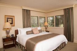 Saddlebrook Resort Tampa