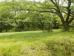 Chiba Inbanuma Park