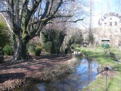Parc Elfenau