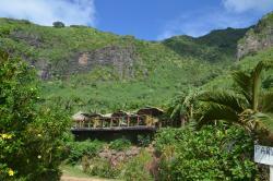 Moorea Tropical Garden
