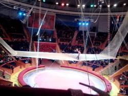 Sochi State Circus