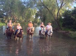 Lo De Marcos Horse Tours