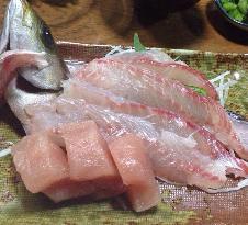 Aoichaya