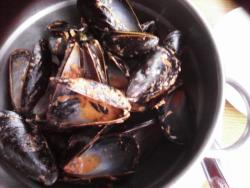 Mussels and More