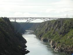 Ponte Dom Pedro II (Ponte Metálica)