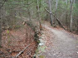 The Donkey Trail in this area is a raised stone walkway that was used to haul raw materials.