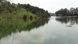 Glenmorgan