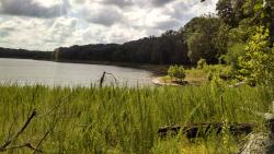 Raccoon Lake State Recreation Area