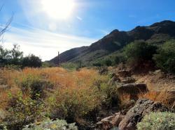Golden Gate Loop Trail