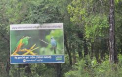 Lahugala Kitulana National Park