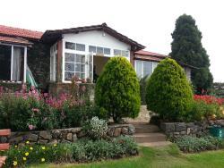 Lawn View (July 2013)