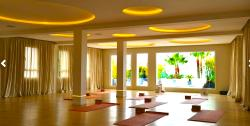 Yoga Shala - Day Classes