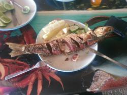 Bohio Del Lago