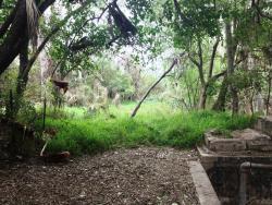 McAllen Nature Center