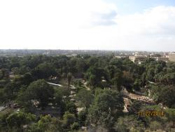 View over zoo from room