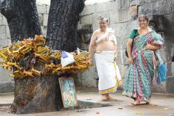 Nitya Kalyana Perumal Temple