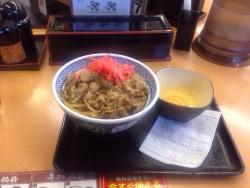 Yoshinoya Shinkiba Station