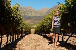 Camino Wine Tours