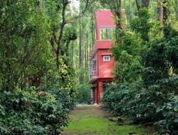 Saphali Estate Homestay