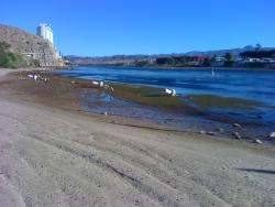 Another view of Colorado River from the beach.