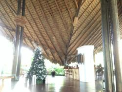 lobby with xmas tree-pic cropped funny with upload - amazing architecturally!