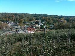 Silverman's Farm