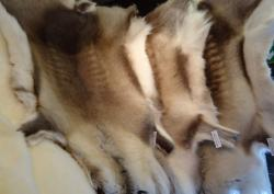 Ambleside Cowhides and Sheepskins