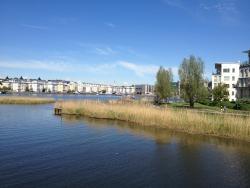 Hammarby Sjöstad in the Summertime