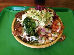 Maoz Chicago