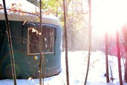 Nurture Through Nature Eco-cabin Rentals and Retreats