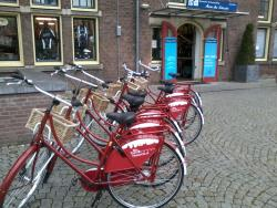 Bike Tours Maastricht