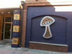 Mellow Mushroom Aiken