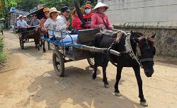 Bao Duyen Tourist