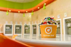 Orange Leaf Frozen Yogurt Marco Island