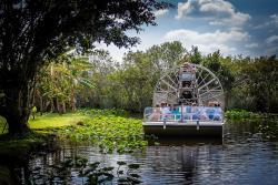 大沼泽地游猎公园
