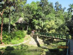 Sierra del Rosario Biosphere Reserve