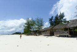 Kite Dream Zanzibar