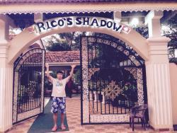 Rico Shadow
