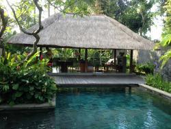 Bile villa's pool area