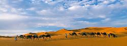 Tour in Morocco Day Tours